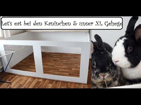 meine kaninchen ziehen um in ein neues gehege doovi. Black Bedroom Furniture Sets. Home Design Ideas