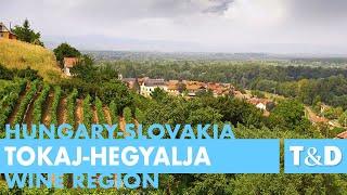 Tokaj-Hegyalja Wine Region - Hungary and Slovakia - Travel & Discover