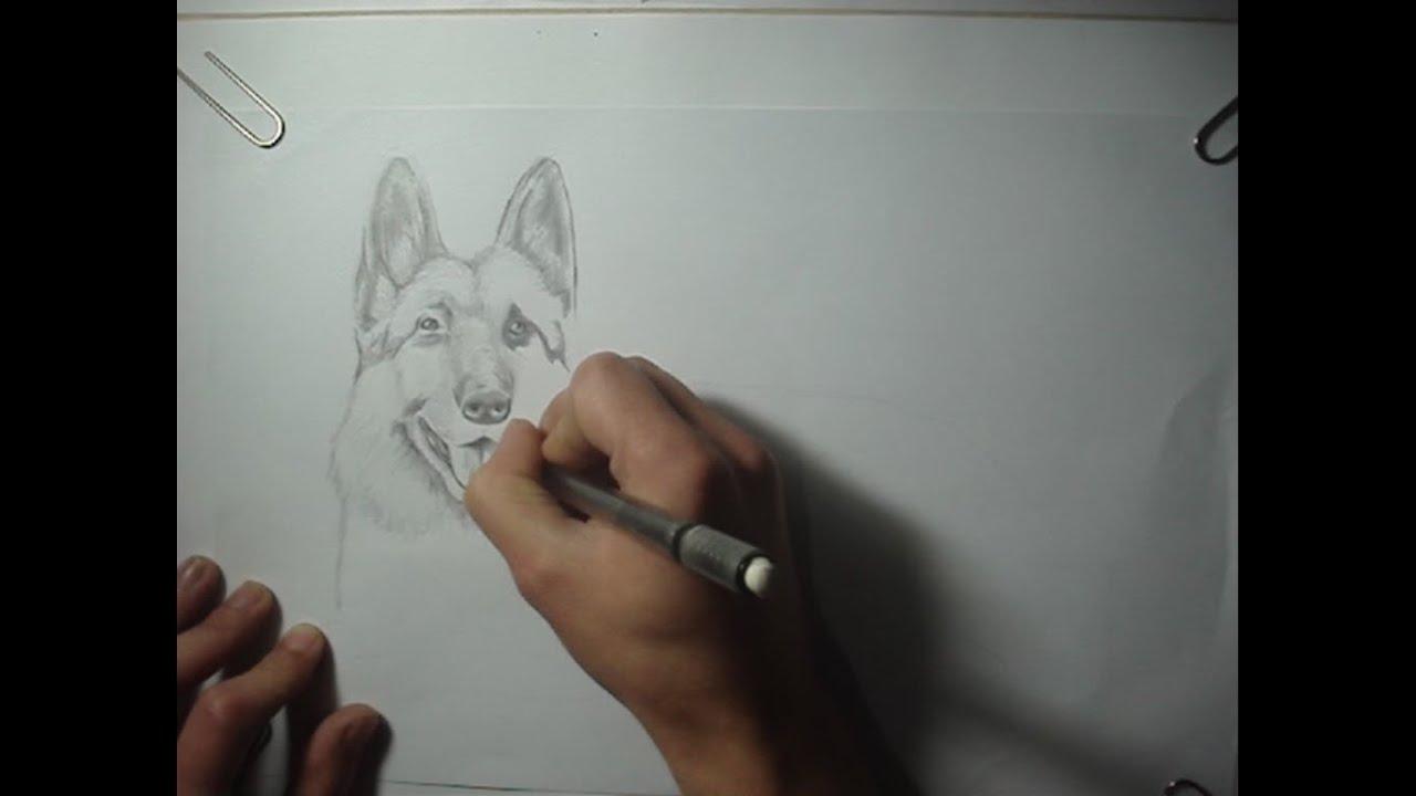 Dibujo Blanco Y Negro (Perrito)