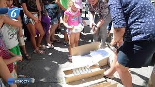 Помощь жителям поселка Зайцево от Общественного штаба по прифронтовым районам ДНР