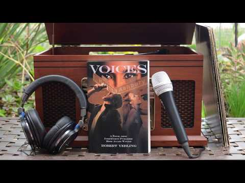 Voices: Rock & Roll Novel of the Year