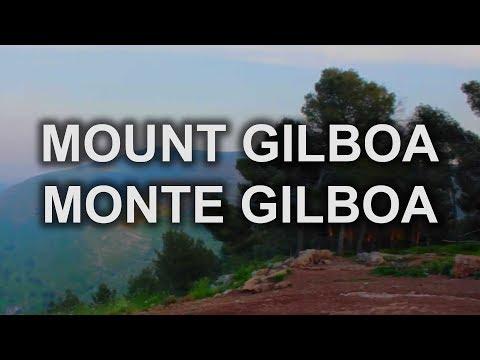 Mount Gilboa   Israel   Cafetorah com