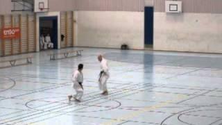 Kumite Shisui Ryu Karate Do Swiss Karatedo Confederation SKC 2011 Maru Dojo Bern Marko Marffy