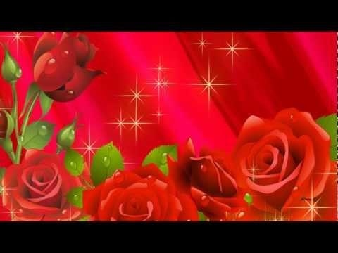 Darren Hayes - Roses