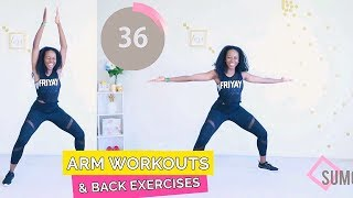 2 in 1 - ARM WORKOUTS & BACK EXERCISES | at home workout - QUICK