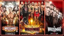 EVERY WWE WRESTLEMANIA POSTER (1-35) (1985-2019)