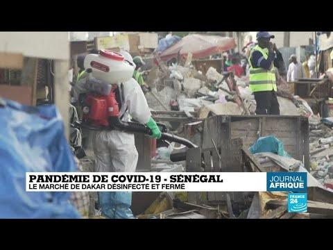 Coronavirus : Confinement En Afrique Du Sud Et Madagascar, Couvre-feu à Dakar Et Alger