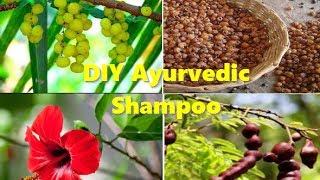 Ayurvedic shampoo 100% natural homemade for extreme hair growth.