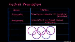 Gestalt Prensipleri (Sinir Sistemi Fizyolojisi) (Psikoloji / Çevreyi Algılama)