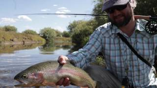 helios 2 fly rods 2017
