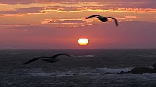 Godrevy Lighthouse Sunset on A Dramatic Evening - Spectacular Beautiful and Amazing