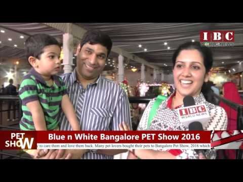 IBC World News_Bangalore Pet Show_Best...