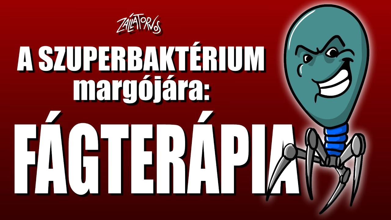 A Szuperbaktérium margójára: FÁGTERÁPIA