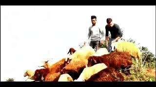اجمل اغنية راب (خاروف)لاجمل ثنائي محمد ورامي موصلي