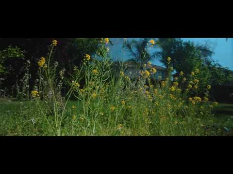 Baixar Eugenia Loli - Download Eugenia Loli | DL Músicas