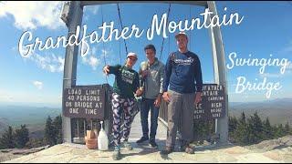 Grandfather Mountain North Carolina  Mile-High Swinging Bridge & Animal Exhibit