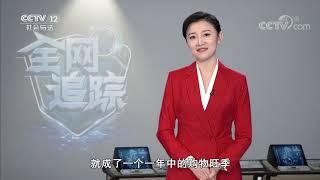 《全网追踪》 20200119| CCTV社会与法