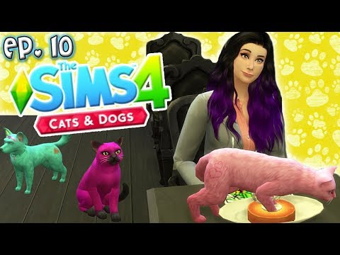 Public Place Chaos - The Sims 4: Raising YouTubers PETS - Ep 10 (Cats & Dogs)