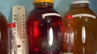 Приготовление медовухи, експеримент часть3