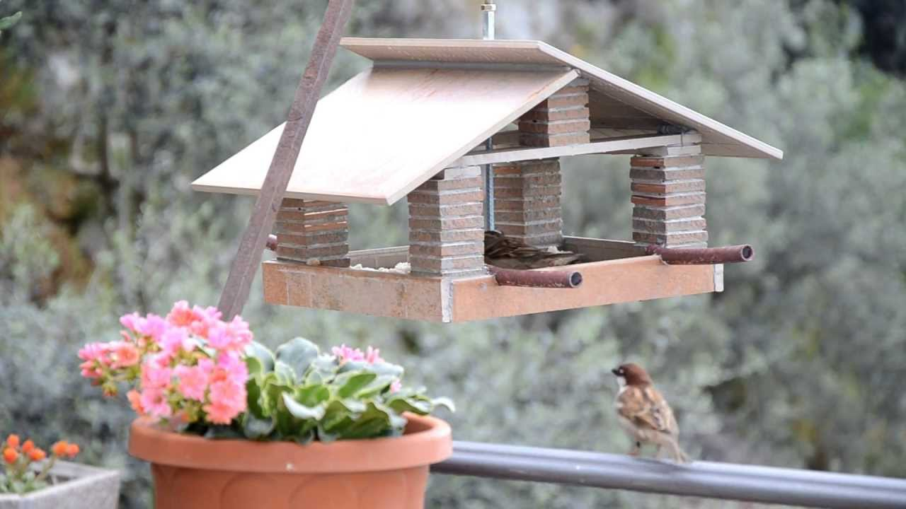 Ben noto casetta mangiatoia per uccellini - house feeder birds - YouTube NJ91
