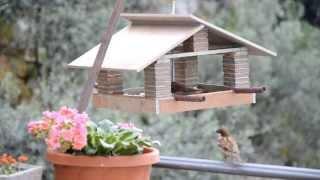 casetta mangiatoia per uccellini - house feeder birds