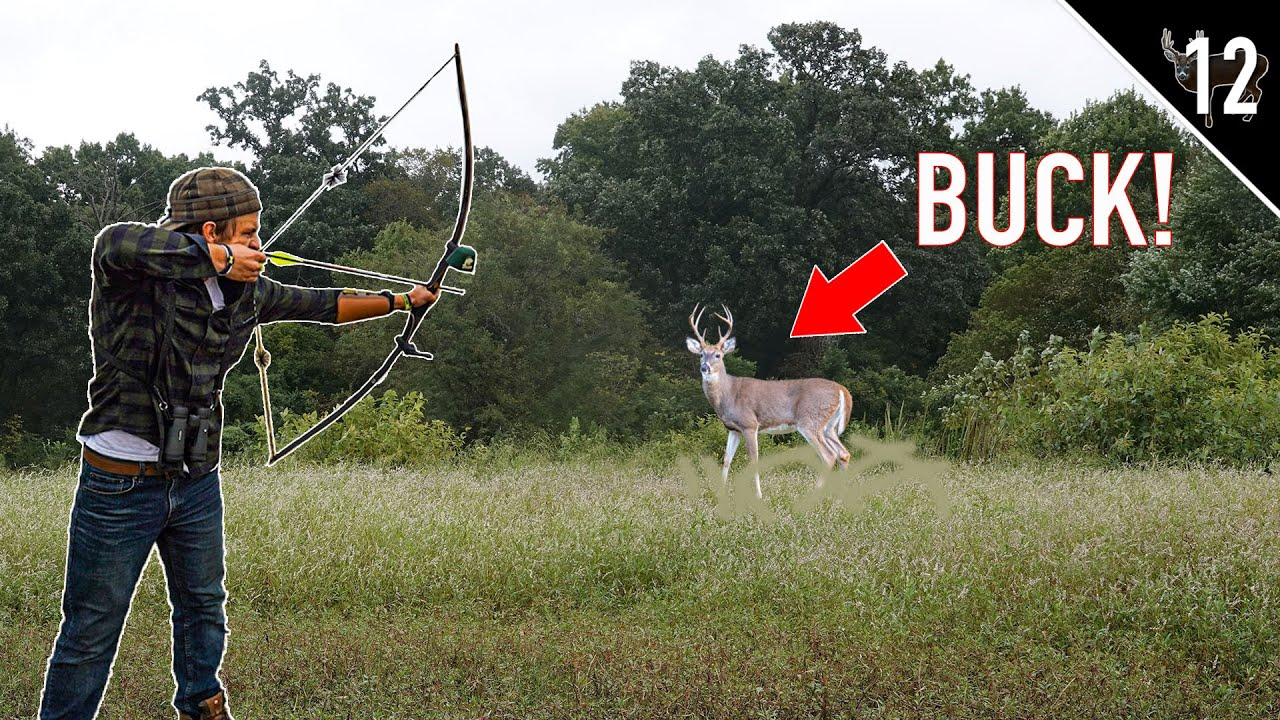 Download Deer Hunting with a LONGBOW!! (We found a BIG BUCK)