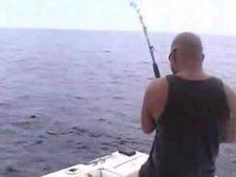 Marlin pez vela dorado doovi for San carlos mexico fishing
