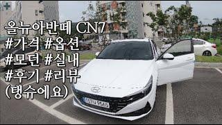 올뉴아반떼 CN7 가격 옵션 편의기능 모던 실내 후기 …