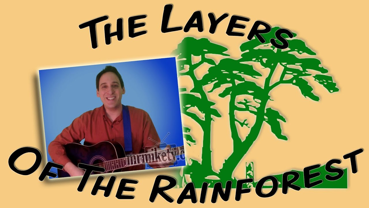 Layers Of The Rainforest Earth Day Song For Children