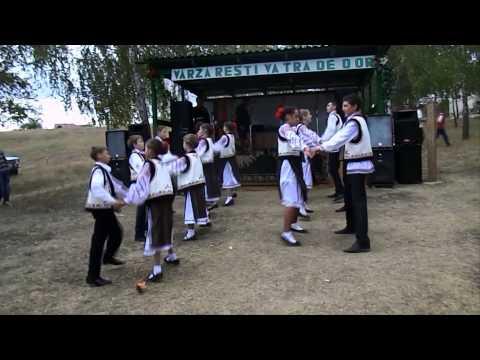 Ansamblu de dansuri