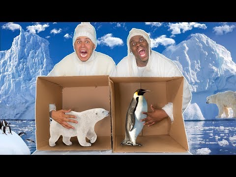 WHAT'S IN THE BOX CHALLENGE  ( FROZEN ICE AGE ANIMALS)