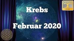 Sternzeichen Krebs Februar 2020 / Dein Monatsorakel / Horoskop Februar Astrologie