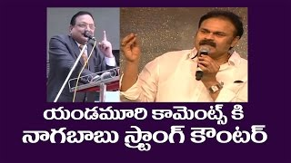 Exclusive Video On Yandamuri Comments Vs Nagababu Reaction I  Khaidi No150 Pre Release Function