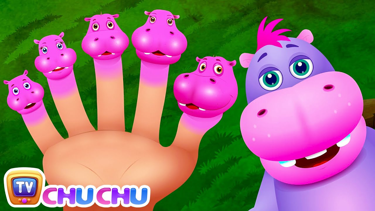 Finger Family Hippo Nursery ChuChu Tv Rhymes