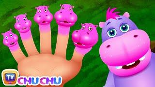 Finger Familie Hippo | ChuChu-TV Tier-Finger Familie Kinderreime-Lieder Für Kinder