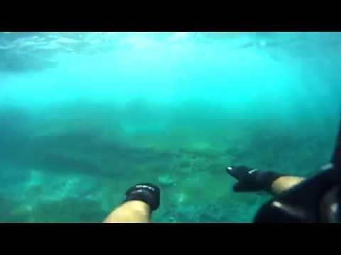 CROATIA Pula Trip. Adriatic Sea Underwater