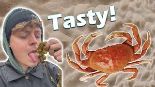 Tasting Weird Sea Things #shorts