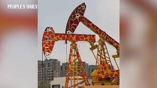 Oil pimps are dressed as giraffes near kingdergarten