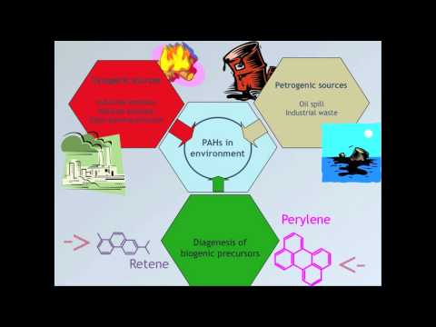 Hydrocarbons in marine environment - Marcia Bicego