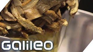 Veganer Meisterkoch vs. Fleischfan | Galileo | ProSieben