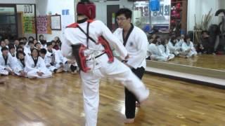 Taekwondo Poomsae Bunhae For Self Defese By Master Jeong