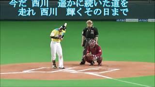 球場収録版に、2017年6月24日に発表された松本剛の新曲、中田翔のファン...