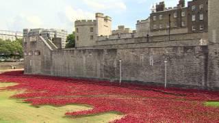 BBC英伦网视频:伦敦塔城壕变罂粟花海纪念一战百年