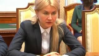 Юлия Светличная провела встречу с Зеэвом Элькиным