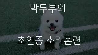 박두부의 초인종 소리 훈련하기!