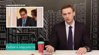 Навальный про то, что сейчас происходит с Настей Рыбкой