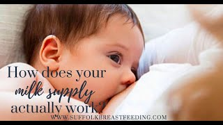 How Does Milk Supply Work | Breastfeeding