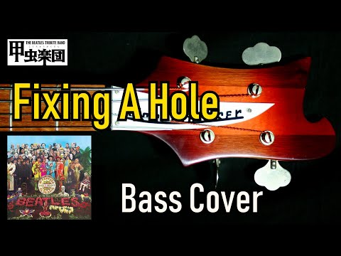 Fixing a Hole (The Beatles - Bass Cover) 50th Anniversary