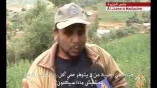 زراعة الحشيش في المغرب
