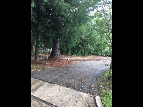 2401 GOVERNMENT STREET, Mobile, AL 36606 - MLS #617628